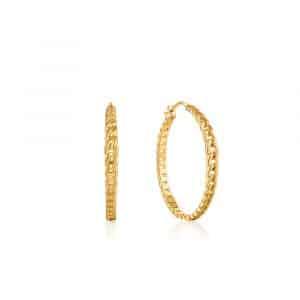 Curb Chain Hoop Earrings